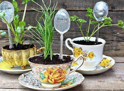Gardening from recycled items! |