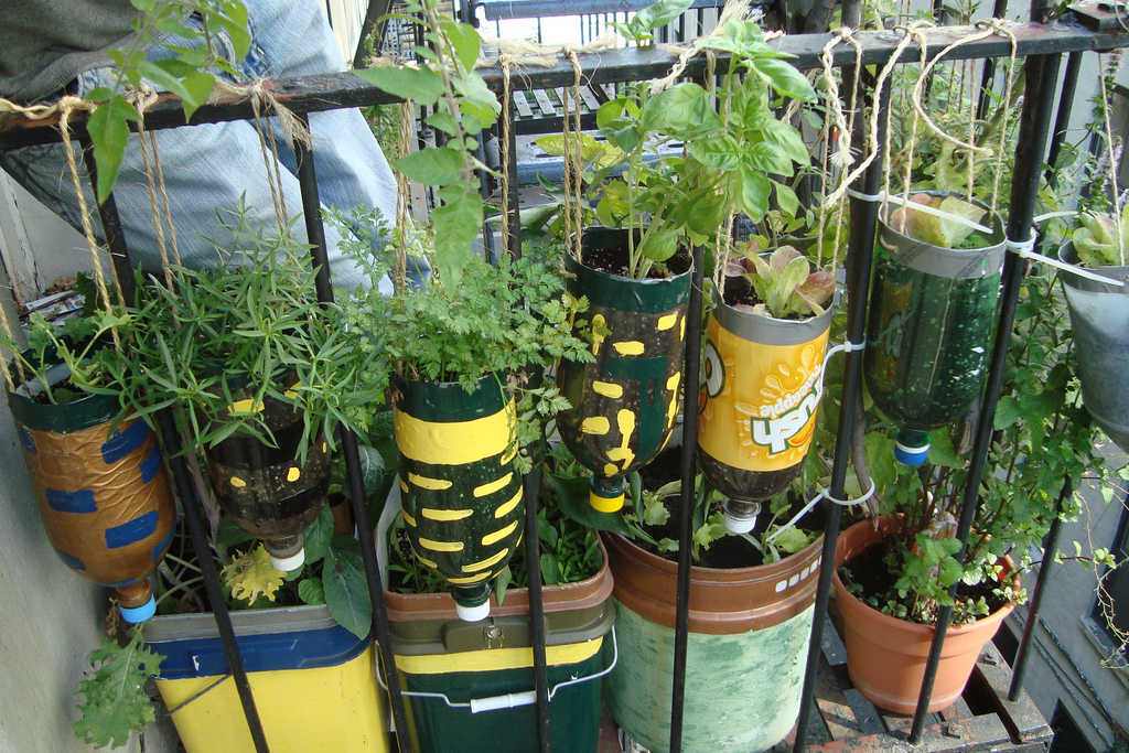 Gardening from recycled items for Flower pot making with waste material